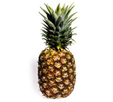 pineapplefacts20n-1-web